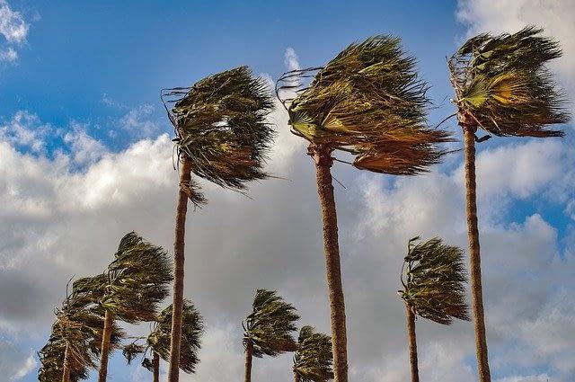 A Windy Century Ride 💨💨💨🚴🏽♂️